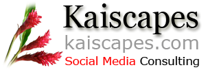 Kaiscapes Social Media Consulting
